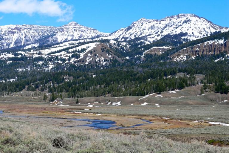 Yellowstone (6)