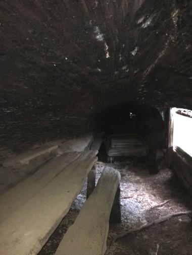 Inside Tharps Log